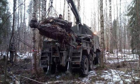 В Ленинградской области поднят советский самолет Ил-2