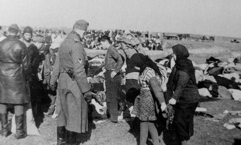 Мемориальный комплекс жителям СССР, ставшим жертвами геноцида на оккупированных территориях во время Великой Отечественной войны, установят в Смоленской области